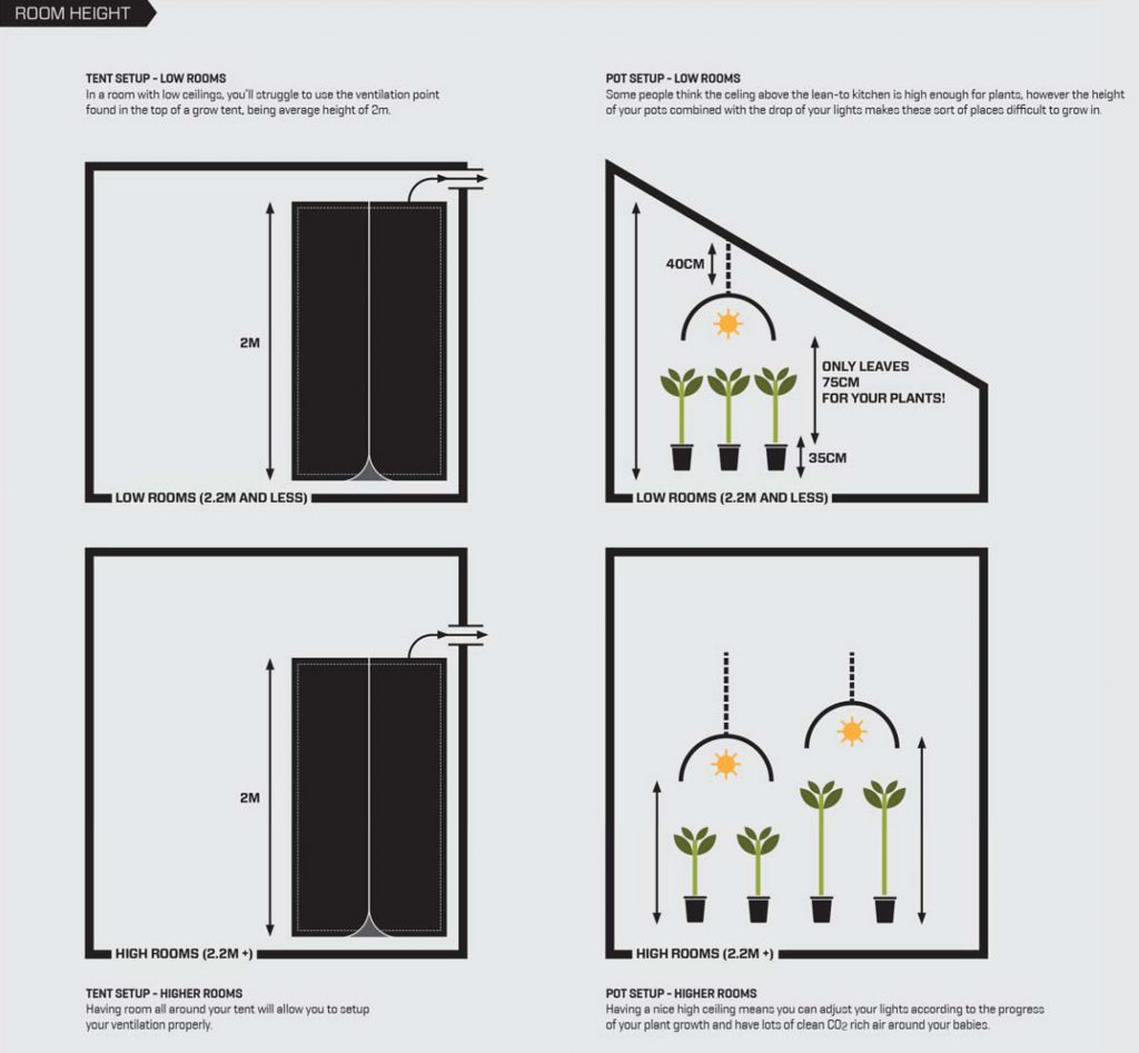 indoor_garden_room_height