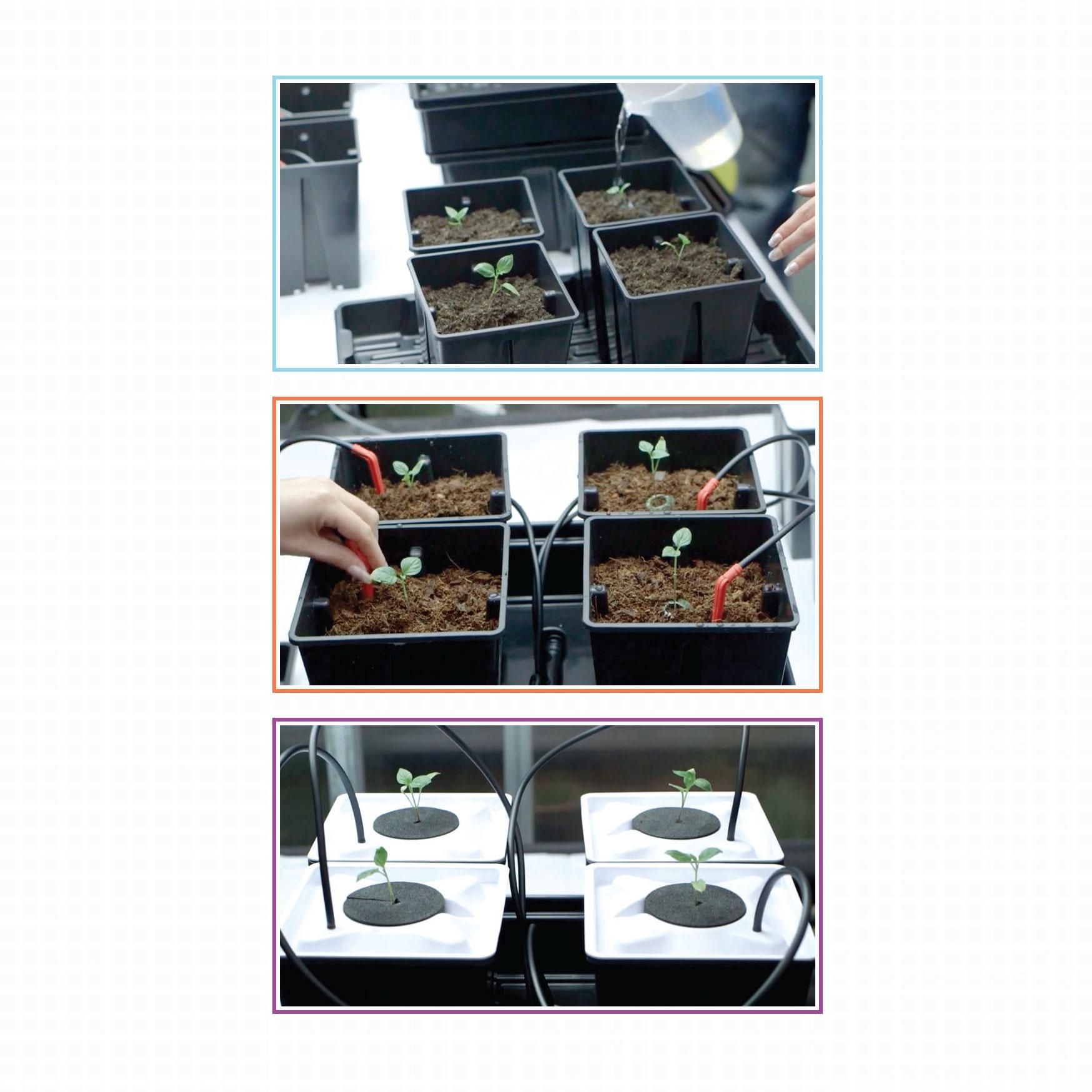 Soil, Geoponics, Hydro, Hydroponics, Aeroponics, Aero, growth media, growing medium