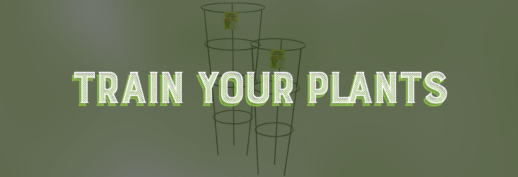 hydroponics, trellises, plant support