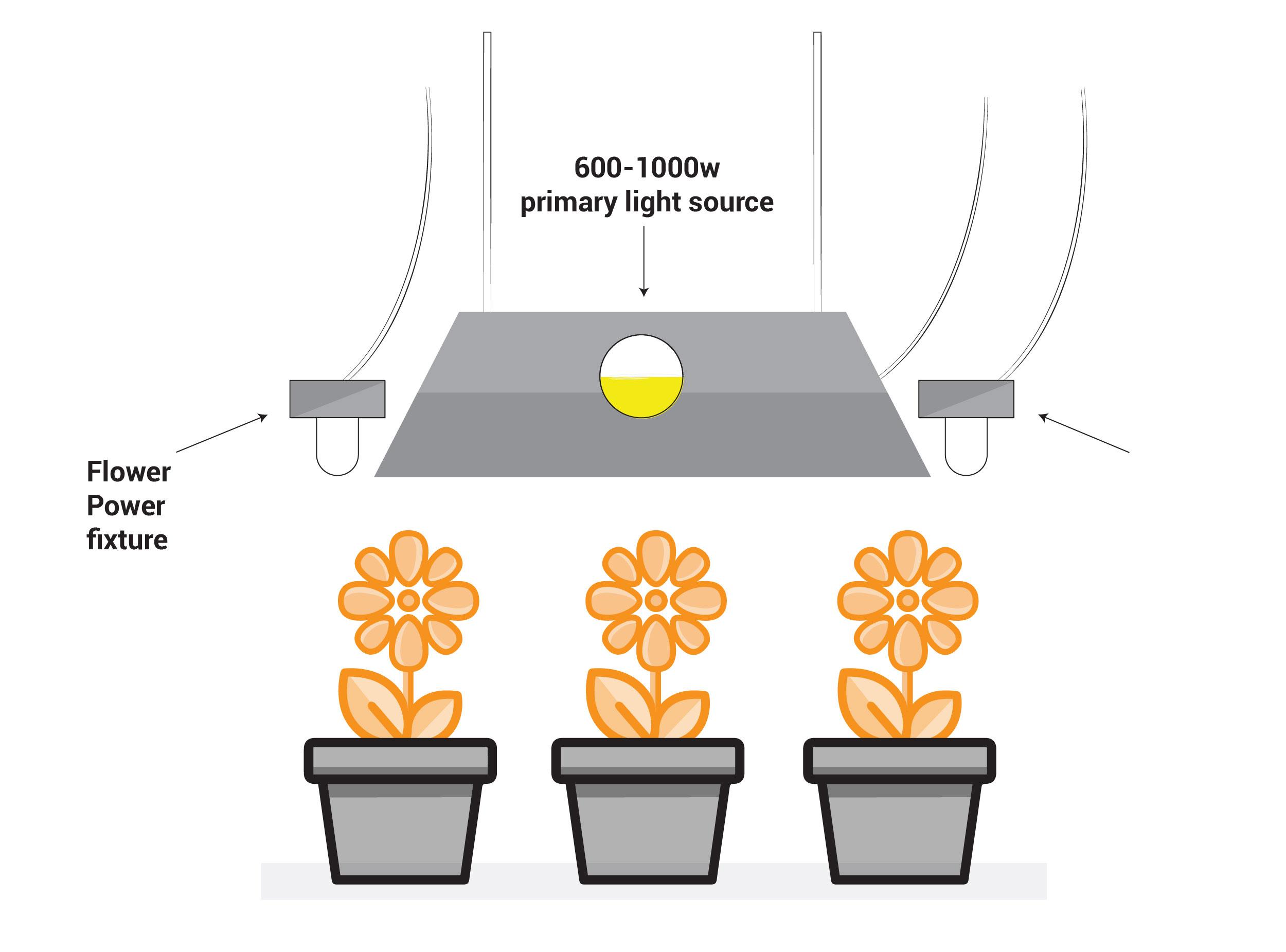 Flower Power, Solacure, Ultraviolet, UV, UV lighting