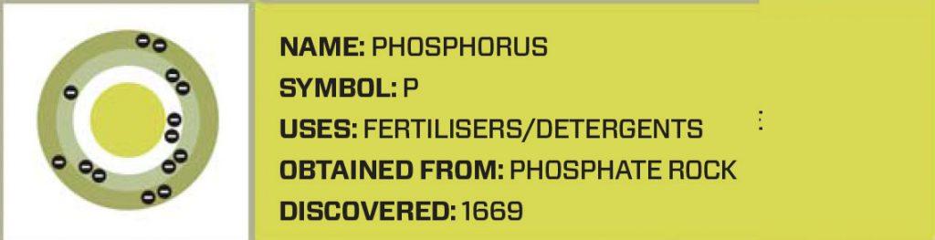 npk, phosphorous, macro nutrients, plant nutrition