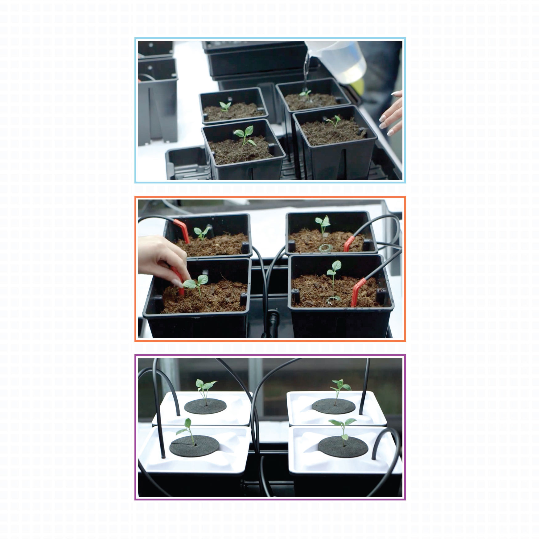 Soil, Geoponics, Hydro, Hydroponics, Aeroponics, Aero, growth media, growing medium