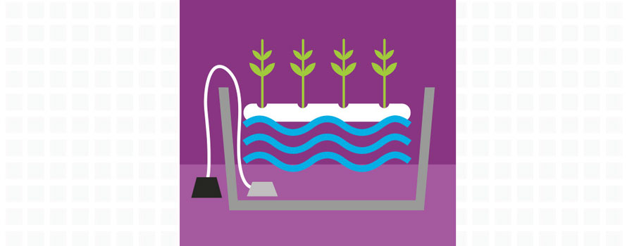 DWC, Deep water culture, hydroponics systems, growing systems, plant pots, hydromag