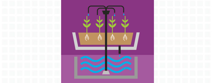dripper, dripper system, hydroponics systems, growing systems, plant pots, hydromag