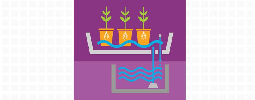 NFT, Nutrient Film technique, hydroponics systems, growing systems, plant pots, hydromag