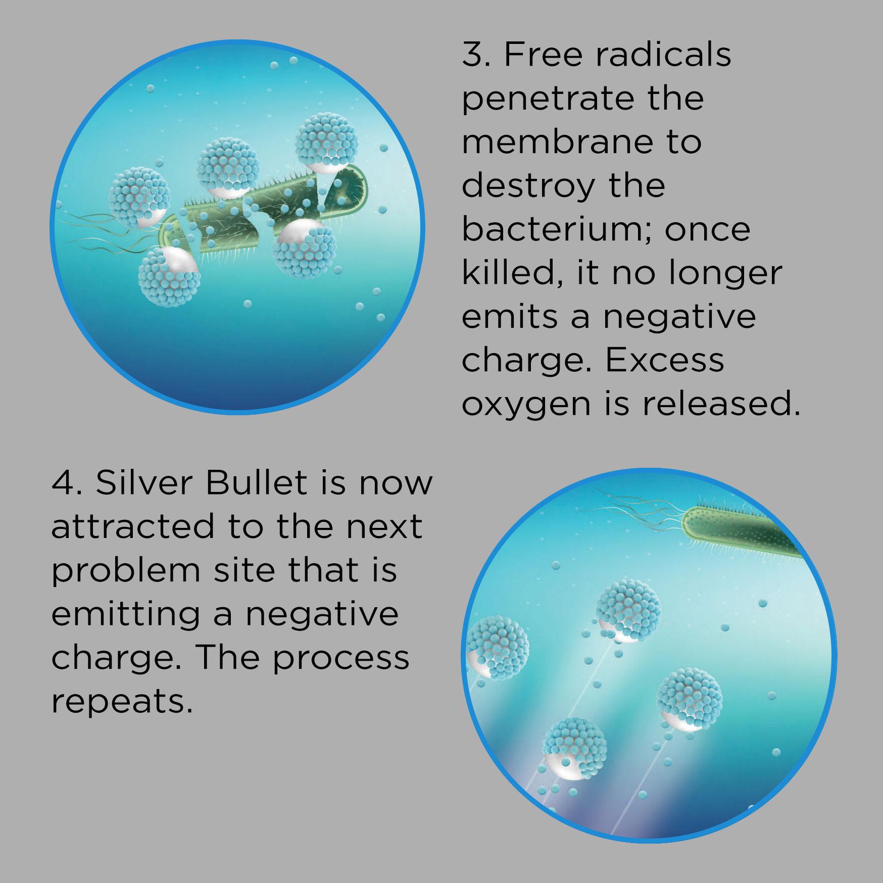 Silver_Bullet
