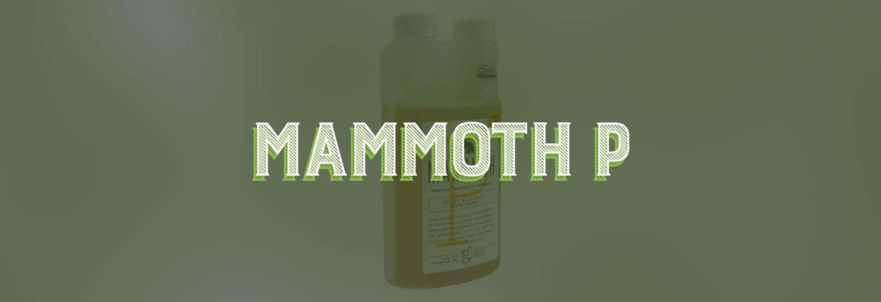 Hydroponics, Mammoth P